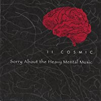 Sorry About the Heavy Mental Music
