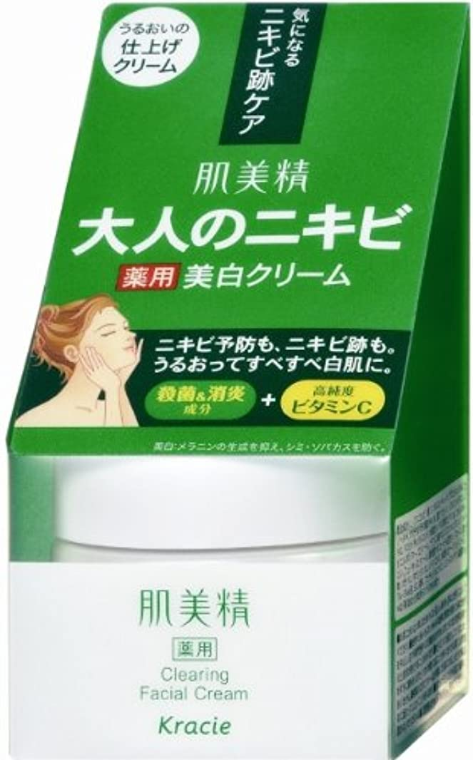 手足クライストチャーチ子孫肌美精 大人のニキビ 薬用美白クリーム 50g  [医薬部外品]