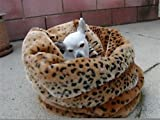 【TIGER DREAM】3WAY BED セレブ犬 Ocelot(ブラウン) [並行輸入品]