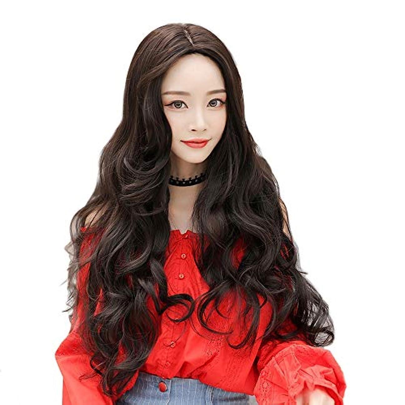 SRY-Wigファッション ブラウンウィッグ合成ウィッグ女性用ロングウェーブウィッグ熱繊維ファッションナチュラルウィッグロールプレイ (Color : 02, Size : 25.5inch)