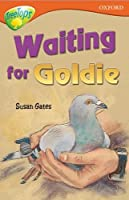 Oxford Reading Tree: Level 13: Treetops Stories: Waiting for Goldie (Treetops Fiction)