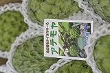 【訳あり】沖縄産アテモヤ約2kg
