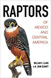 Raptors of Mexico and Central America 画像