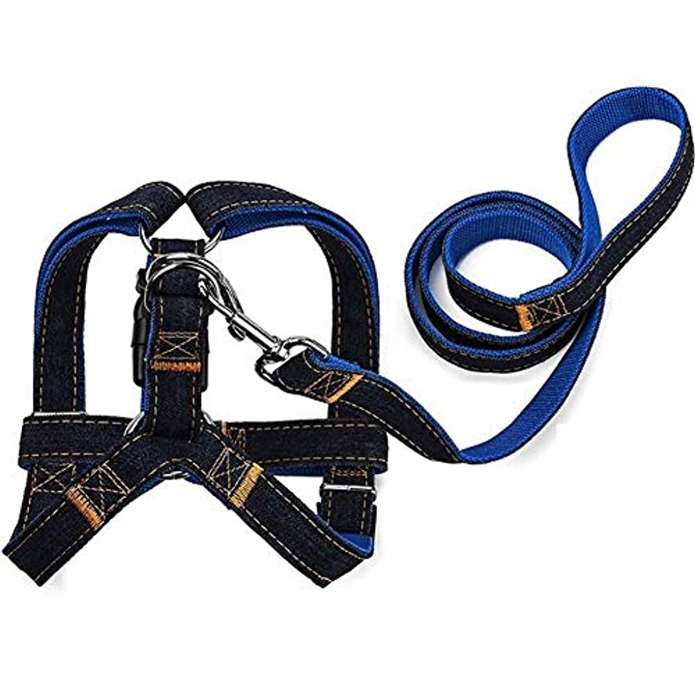 太平洋諸島アライメント想起FELICIAAA 新しい到着S/M/Lカラフルなジャンデニムリーシュハーネス犬首輪チェーン猫ロープベルト調節可能な首輪犬 (色 : 青, サイズ : L)