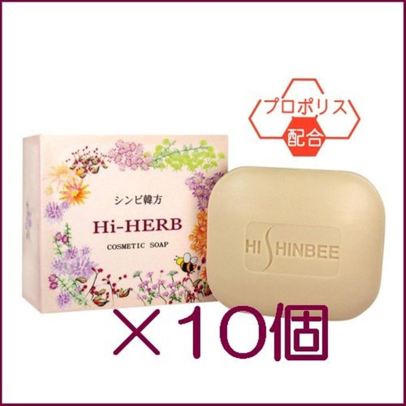 お肉見かけ上進捗シンビ 韓方ハイハーブ石鹸 100g ×10個