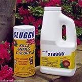 発芽SEEDS:スラグSLUGGOベイト殺虫剤、有機カタツムリ害虫リン酸鉄安全な昆虫1