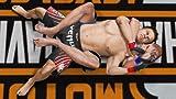 「UFC Undisputed 3」の関連画像