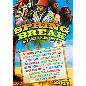 Spring Break 2011 [DVD] [Import]