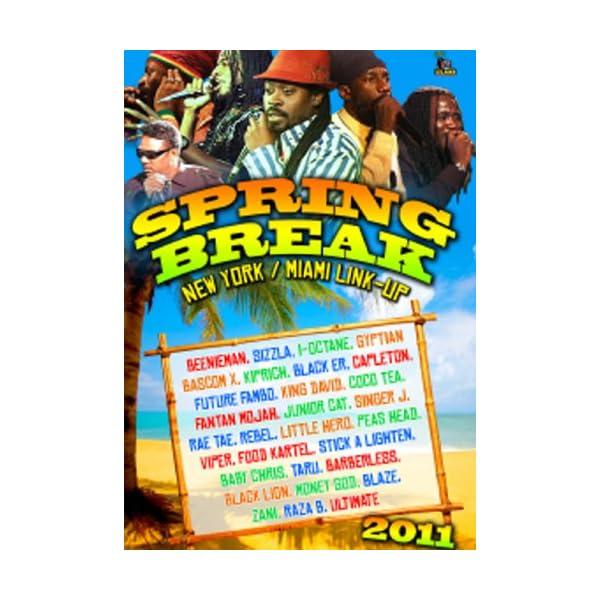Spring Break 2011 [DVD] ...の商品画像