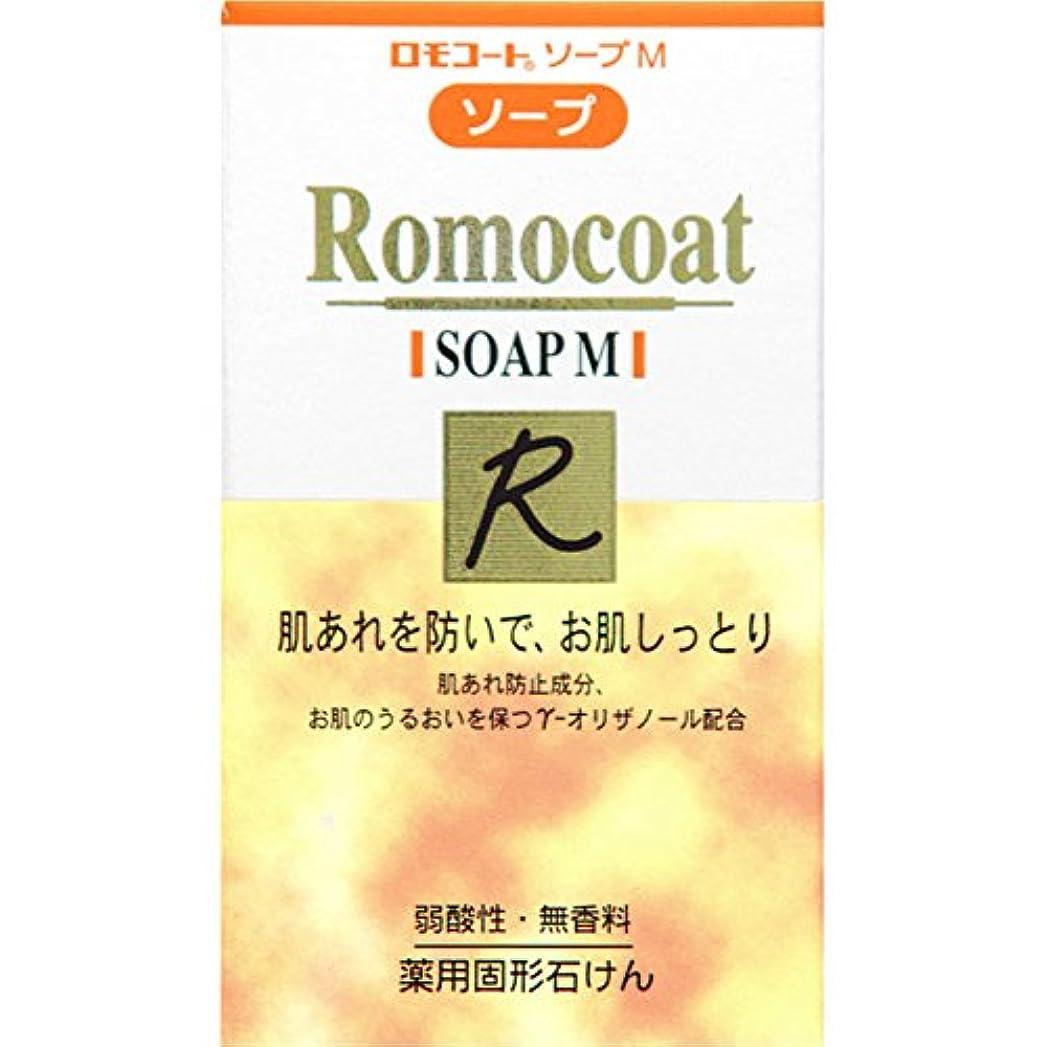 闘争立場睡眠全薬工業 ロモコート ソープM 60g (医薬部外品)