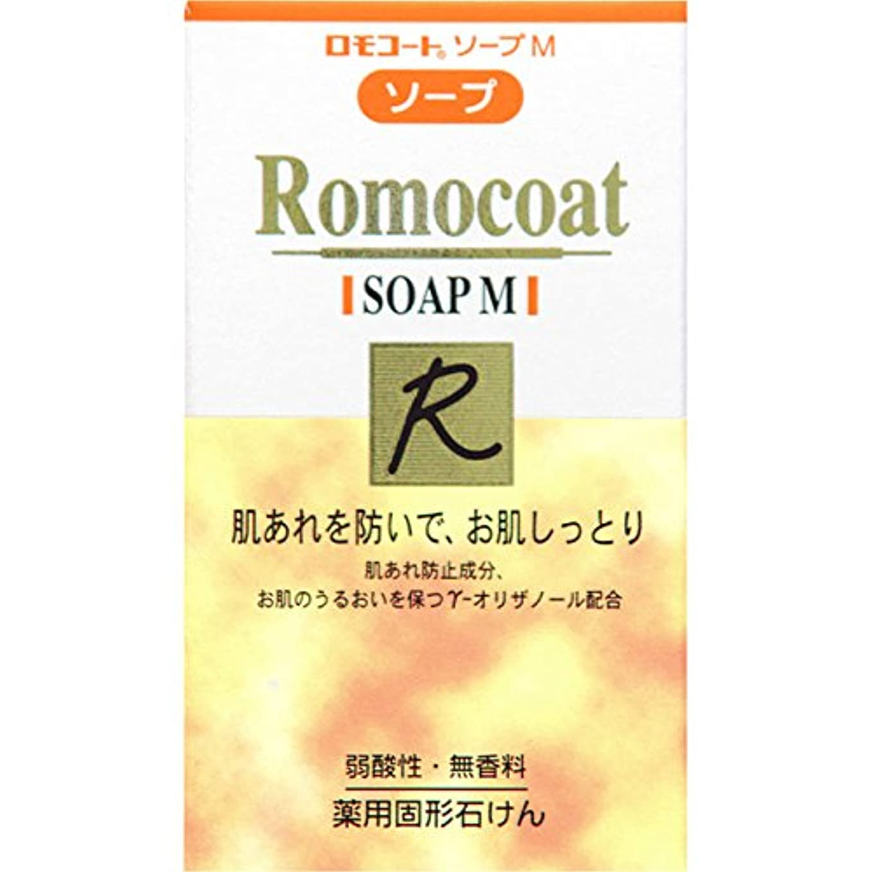 厄介な自伝レオナルドダ全薬工業 ロモコート ソープM 60g (医薬部外品)