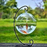 (若い若い)Young Young サスペンション 金魚鉢 直径12cm 鉄ハンガー 高さ23cm ブラック
