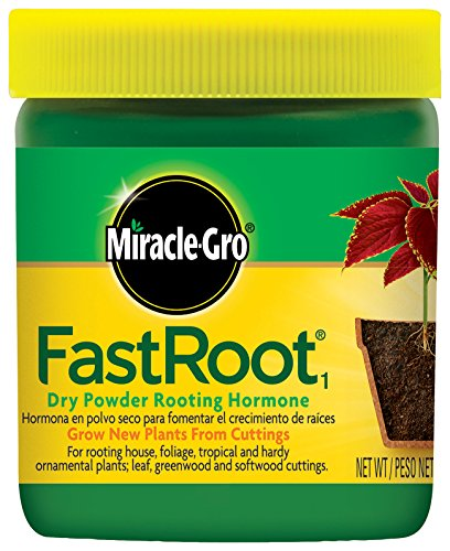 Miracle-Gro FastRoot Dry Powder Rooting Hormone Jar, 1-1/4-Ounce by Miracle-Gro