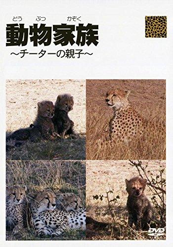 動物家族 チーターの親子 [DVD] -