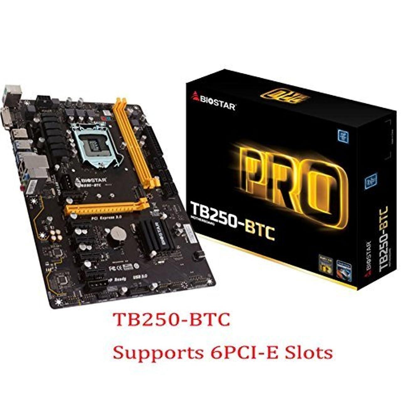 八百屋クレタブロックするBIOSTAR TB250-BTC Motherboards 6 PCIE B250 LGA 1151 DDR4 ATX Mining Motherboard (alternative H81 BTC PRO TB85 H81) (6-PCIE) [並行輸入品]
