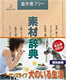 素材辞典 Vol.145 ウーマンズライフ ~犬のいる生活編