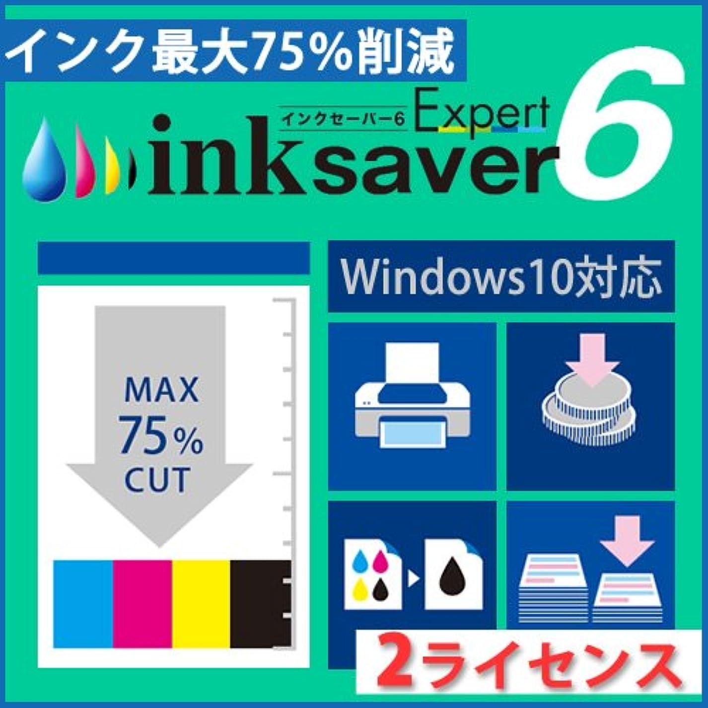 放射する池ベールInkSaver 6 Expert 2ライセンス版 [ダウンロード]