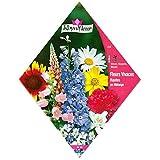 [春・秋まき 花タネ][フランス花の種]背の高い多年草ガーデンミックス * ノーブランド品