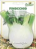 野菜の種 フェンネル(フィノッキォ)・ロマーニャ
