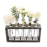 Funsoba Rustic Vintage Hydroponic Flower Vases Set in Wooden Rack 5 Bottles (Type A 5 Vase Set)
