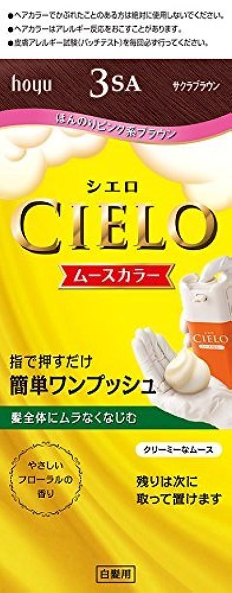 誠意ベッドペインギリックホーユー シエロ ムースカラー 3SA (サクラブラウン)×6個