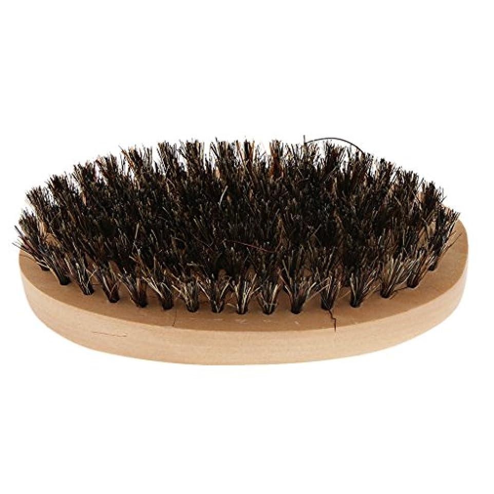 聖歌批判推進力Toygogo 柔らかい毛が付いている木のひげのブラシは人のためのすべてのひげの香油およびオイルを使用します