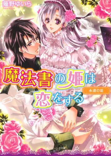魔法書の姫は恋をする  永遠の証 (角川ビーンズ文庫)の詳細を見る