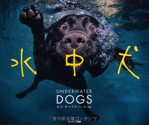 水中犬の詳細を見る