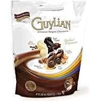 GUYLIAN ギリアン テンプテーション チョコレートアソート 522g(6種類/約54個入り) ベルジャンチョコレート