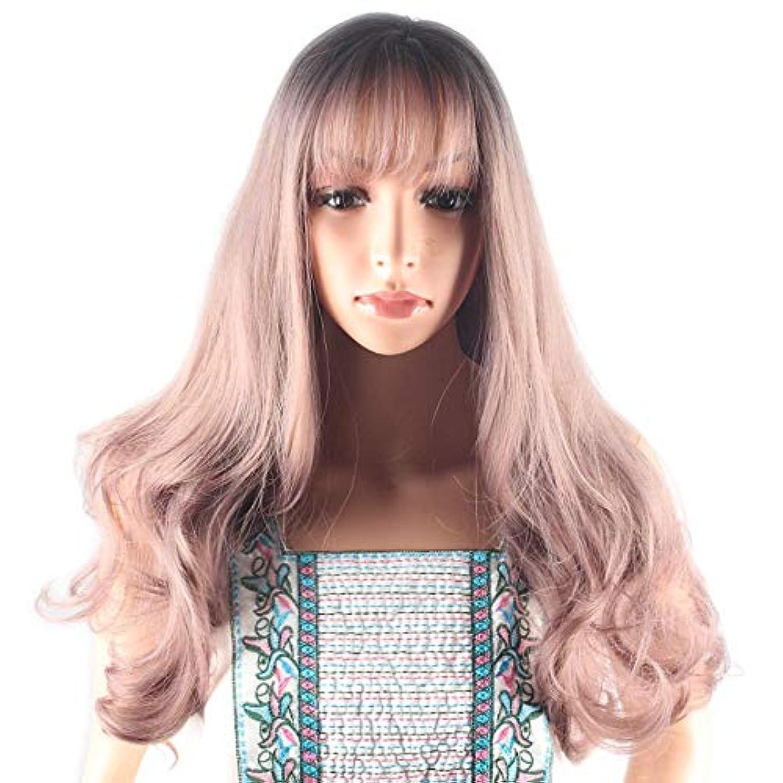 引き算スラック簡潔なWASAIO 空気前髪自然勾配フルヘッドと薄紫色のかつら波状の長い巻き毛 (色 : Photo Color, サイズ : 65cm)