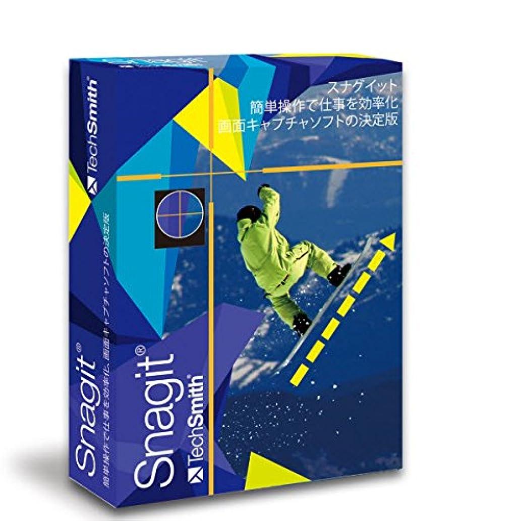 天依存する酸【新発売】Snagit 11日本語版(Snagit 2019 英語版ダウンロードにも対応)