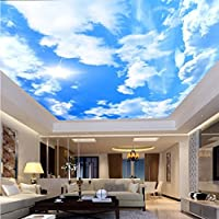 Weaeo カスタム大きな天井の壁紙の壁紙現代のシンプルな青空と白い雲フレスコのリビングルームホテルの壁紙-350X250Cm