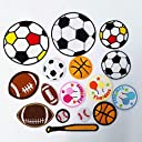 AUGOOG 16枚セット 刺繍ワッペン アイロン接着 バレーボール サッカーボール 手芸 幼稚園 保育園 アップリケお祝いギフト