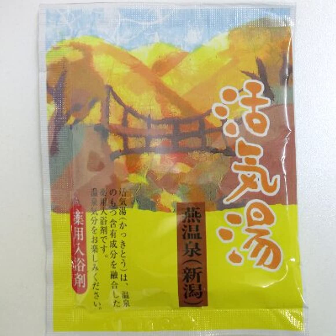 ピルファーベックス辛い活気湯 燕温泉(シトラス)
