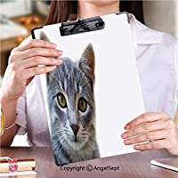 フォルダーボードフォルダーライティングボード 事務用品の文房具カメラを見てかわいい猫 (2個)