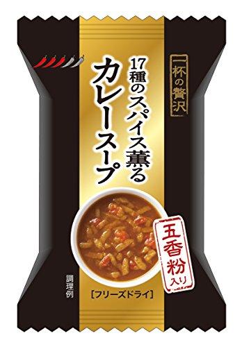 一杯の贅沢 17種のスパイス薫るカレースープ 8.5g×10個
