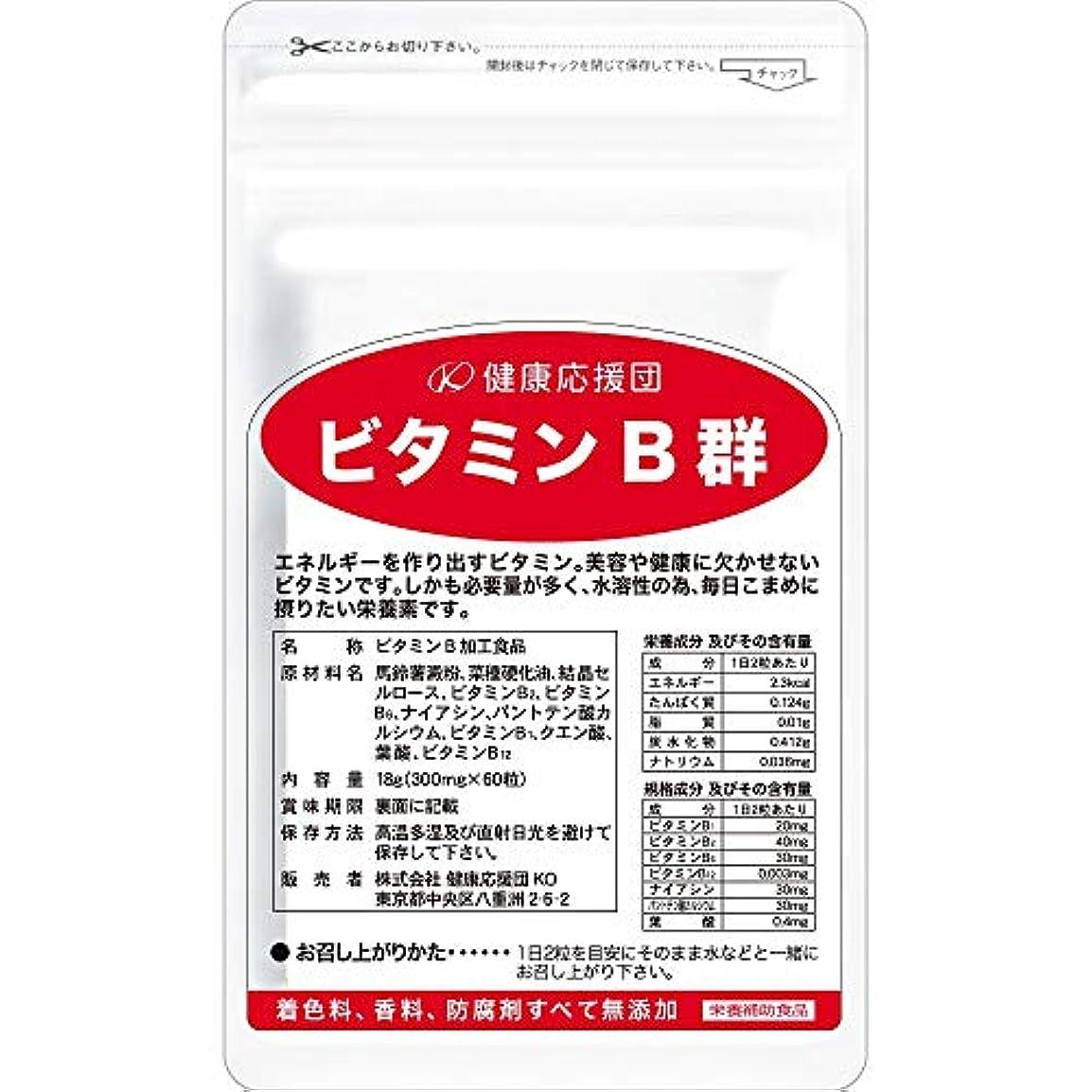 酔ってベアリング裏切り者健康応援団 お徳用ビタミンB群(6か月分)6袋360粒(葉酸プラス)