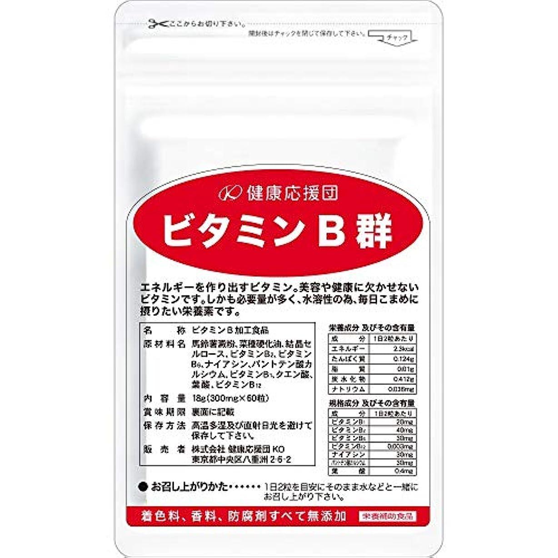 健康応援団 お徳用ビタミンB群(6か月分)6袋360粒(葉酸プラス)