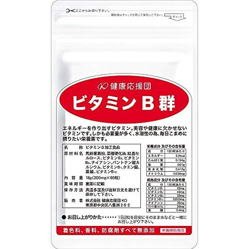 健康応援団30日分ビタミンB群(60粒)