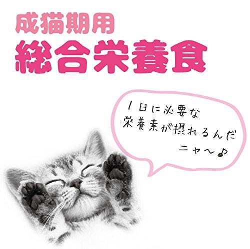 https://images-fe.ssl-images-amazon.com/images/I/51ubxZMBh%2BL.jpg
