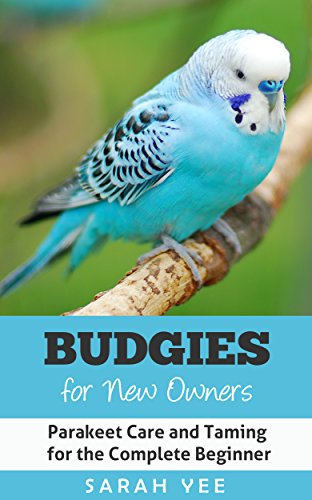 amazon budgies for new owners parakeet care and taming for the