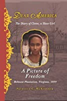A Picture of Freedom : the Diary of Clotee, a Slave Girl (Dear America)