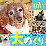 犬めくり 2021年 カレンダー 日めくり CK-D21-01