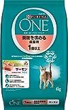 ピュリナ ワン 美味を求める成猫用 1歳以上 サーモン 4kg 製品画像