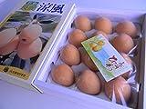 フルーツyamakiti お値段そのまま!長崎産「びわ」た〜ぷり1キロ!化粧箱入