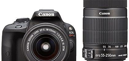 カメラ女子に!デジタル一眼レフ、入門のカメラを教えて -家電・ITランキング-