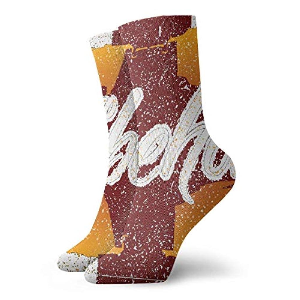 完全に速記必需品かわいいかわいい靴下の休日の靴下クリスマスの靴下
