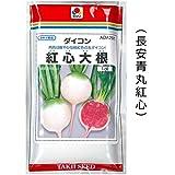 丸だいこん 種子 紅心大根 コウシンダイコン 中国野菜 ( 長安青丸紅心 ) 1dl