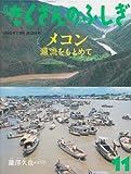 月刊 たくさんのふしぎ 2008年 11月号 [雑誌]