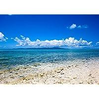 絵画風 壁紙ポスター (はがせるシール式) 南国のビーチと透き通る海 島 青空 景色 絶景 キャラクロ BCH-024A2 (A2版 594mm×420mm) 建築用壁紙+耐候性塗料